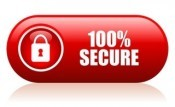 100-per-cent-secure